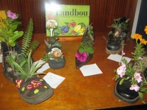 Landbou kompetisie: tuintjie in 'n skoen