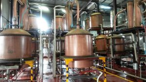 brandewyn kelder (Custom)