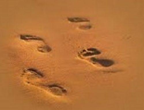 Laat goeie voetspore