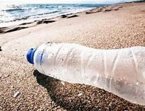 Kleinbrak lede help strande opruim