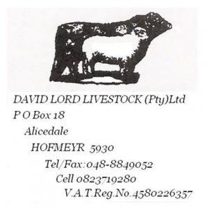 David Lord (Custom) (Custom)