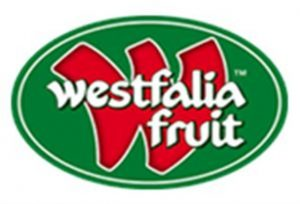 westfalia (Custom)